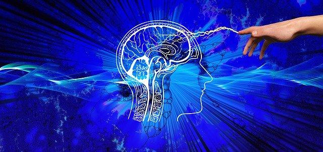 Neurociência aplicada à arquitetura