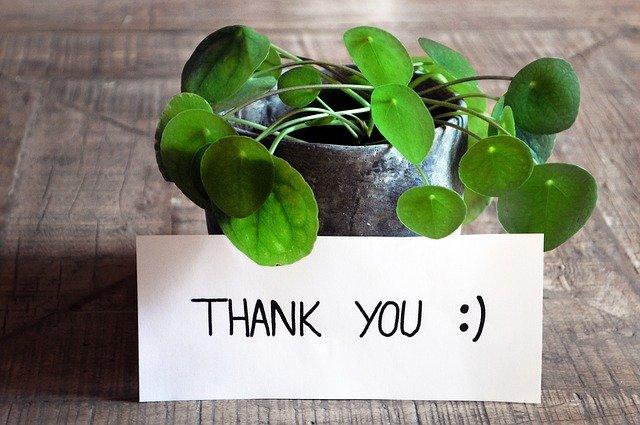 Gratidão no trabalho